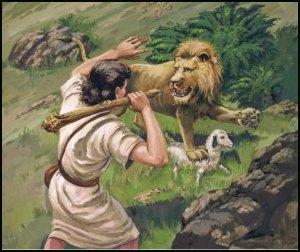 DAVID CLUBS THE LION-03